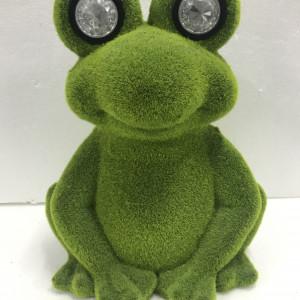 Sitting Frog with Solar Eyes