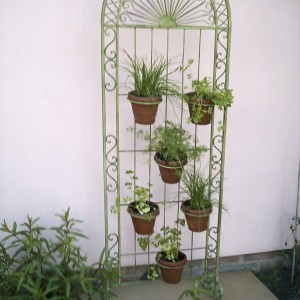 Wimbledon Plant Screen with 6 pots