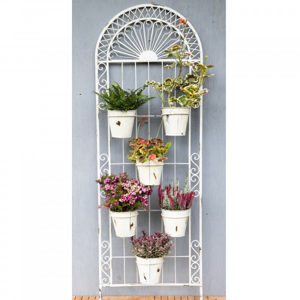 Louis Plant Screen with 6 pots